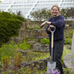 Jobs For The Garden This Autumn